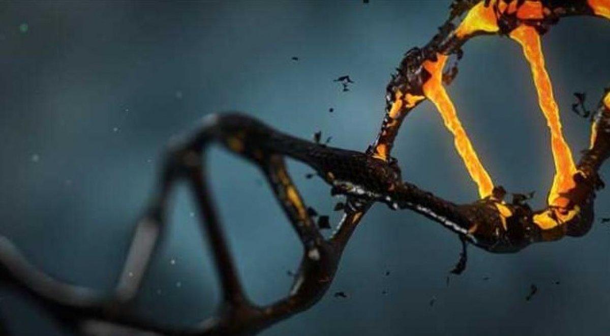 Genetik hastalıkların tedavisinde çığır açacak buluş