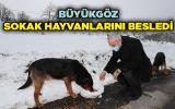 Başkan  Büyükgöz sokak hayvanlarını besledi